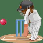 Immagine di Cricket Matchup